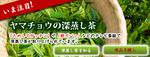 fukamushicha_banner.jpg